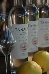 Tanagra 2